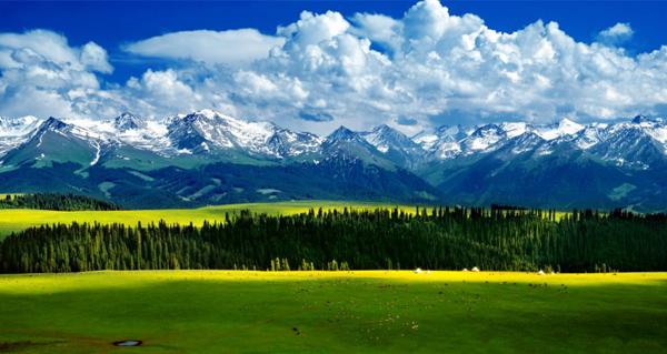 乌孙国所在地——伊犁州喀拉峻风景区